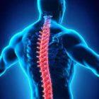 Спинальный инсульт: симптомы ипричины