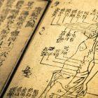 Почему китайская медицина неподходит длярусского